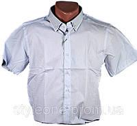Рубашка мужская. Белая. Короткий рукав