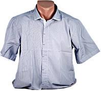 Рубашка мужская синяя. Короткий рукав