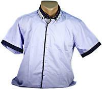 Рубашка мужская приталенная. Сиреневая. Короткий рукав