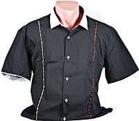 "Рубашка мужская ""Pierre Martin"". Короткий рукав. Черная"
