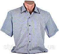 "Рубашка мужская ""Pierre Martin"". Синяя полоска. Короткий рукав"