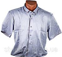 "Рубашка мужская ""Pierre Martin"". Короткий рукав. Сиреневая"