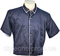 "Рубашка мужская ""Pierre Martin"". Короткий рукав. Синяя"