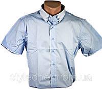 Рубашка мужская. Голубая. Однотонная. Короткий рукав