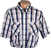 """Рубашка мужская """"Brossard"""". Короткий рукав. Синяя клетка"""