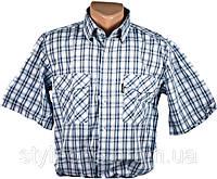 "Летние рубашки мужские ""Brossard"". Короткий рукав. Синяя клетка"
