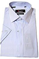 """Рубашка мужская """"Sigmen"""". Голубая полоска. Короткий рукав"""