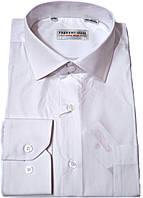 """Рубашка мужская.""""Ferrero Gizzi"""".Белая. Длинный рукав"""