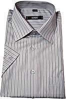 """Рубашка мужская """"Bendu"""". Серая полоска. Короткий рукав"""