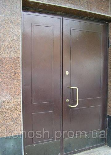 двери входные купчино металлические цены