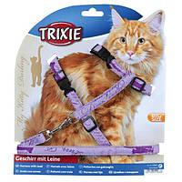 "Шлейка  XL с поводком для больших котов 33-57см/13мм ""MY KITTY DARLING"""