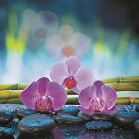Картина на стекле от производителя 3-D орхидея 50*50 см