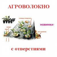 "Агроволокно ТМ ""Агротекс"" 60 UV перф. черный (1,6х200)"