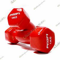 Гантели для фитнеса 2 шт. по 1 кг.