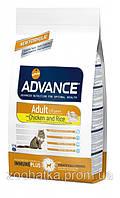 Advance (Эдванс) Cat Adult Chiсken & Rice (15 кг) корм для взрослых котов с курицей