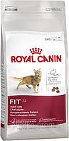 Royal Canin FIT 32 (10 кг) Фит 32