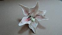 "Авторский цветок "" Лилия ""бело-розовая d150 (код 01149)"