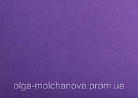 Фиолетовый фом Фиолетовый
