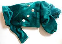 Велюровый костюм для собачки « Джесси»