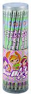 Карандаши графитные с резинкой (тубус, 36 шт) KITE 2013 Pop Pixie 056