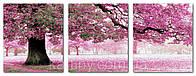 """""""Картины раскраски по номерам"""" Триптих Весенний цвет."""