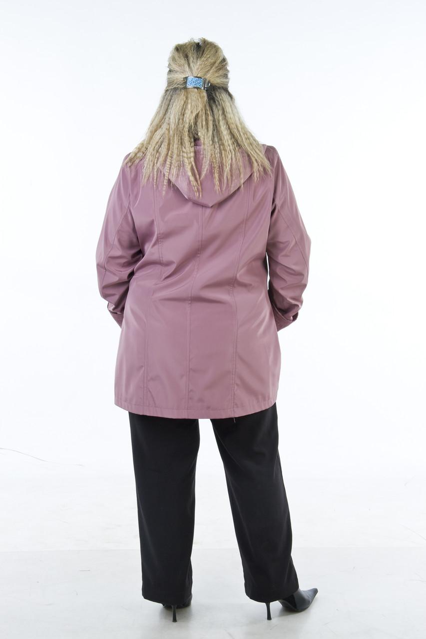 Купить женскую одежду больших размеров от производителя в розницу