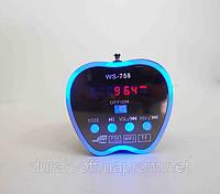 Аудио-колонка Apple ws-758 USB, MP3, Радио