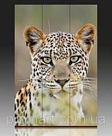 """Ширма одностороння на полотні 120х180 см """"Леопард"""""""