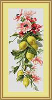 """Набор для вышивки крестом """"Композиция с лимоном"""""""