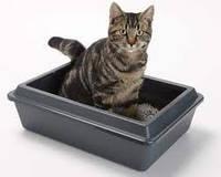Туалеты для кошек и собак