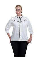 Женская офисная блуза большого размера белая