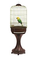 Клетка IMAC 02929 LORY (ЛОРИ) с подставкой для попугаев, пластик, латунь