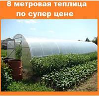 Теплица поликарбонатная длиной 8 метров, шириной 3 метра с поликарбонатом 4 мм.
