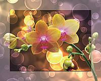 Картина на стекле с МДФ подложкой Цветы 40*50 см