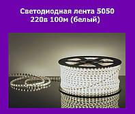 Светодиодная лента 5050 220в 100м (белый)
