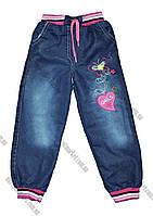 """Детские джинсы на девочку на травке  (1-5 лет) """"Bembi"""" купить оптом со склада LM-775"""