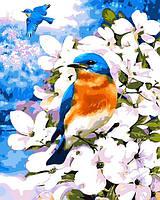 """Рисование по номерам """"Птичка на яблоневой ветке"""" набор для творчества"""