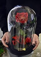 Роза в колбе с индивидуальной гравировкой