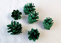 Набор из 6-ти шишек для  творчества шишки зеленый. Новогодние украшения