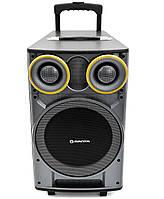 Мощная Аудиосистема MANTA SPK 5003 Bluetooth DJ