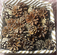 Шишки сосны маленькие 3-4 см 100 шт, 45