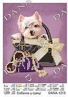 """Схема для вышивки бисером А5 формата """" Собачка в сумке"""""""