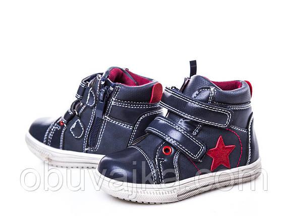 Демисезонная обувь Ботинки от фирмы С Луч для девочек оптом(22-27), фото 2