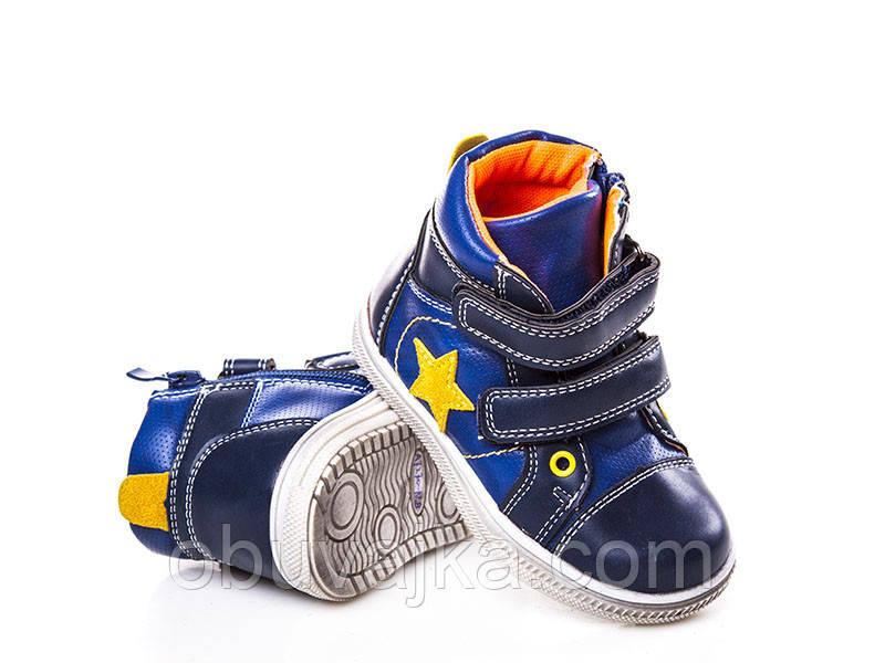 Демисезонная обувь Ботинки от фирмы С Луч для девочек оптом(22-27)