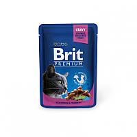Консервы 100 г курица и индейка для котов Брит Премиум / with Chicken & Turkey pouch Brit Premium