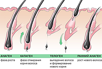 Мезотерапия в Киеве - эффективное лечение волос и проблемной кожи головы