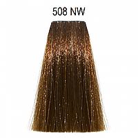 508NW (натуральный теплый светлый блондин) Стойкая краска для седых волос Matrix Socolor Extra Coverage,90ml