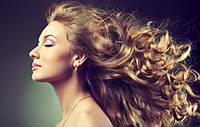 Продать волосы КАМЕНСКОЕ, фото 1