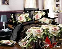Двуспальный комплект постельного белья ранфорс R2034 ТM TAG