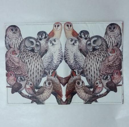 Обложка на Паспорт / Совы семья / Кожзам